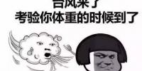 """台风""""玛娃""""有点任性,它对番禺有何影响? - 广东大洋网"""