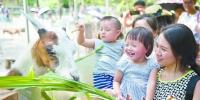国庆中秋长假第二天,广州各大旅游景点火爆。图为广州动物园,家长带着小朋友喂动物。  南方日报记者 张梓望 摄 - 新浪广东