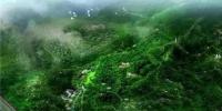中山明年三月开建凤凰山森林公园 又休闲健身好去处 - 新浪广东