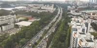 ▲东莞交警将与保险协会联动,高效处置交通事故 记者 曹雪琴 摄 - 新浪广东