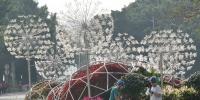 周末冷空气来报到,广州又要进入雨雾模式 - 广东大洋网
