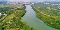流溪河30条一级支流达Ⅱ类水质 - 广东大洋网
