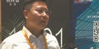 子公司助展进博会受《新闻联播》关注,岭南股份文化板块稳步崛起 - News.Timedg.Com