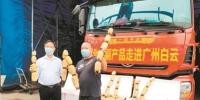 """每天约450吨湖北优质农产品运抵江南市场 档主表示""""霜打之后更甜更好吃"""" - 广东大洋网"""