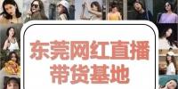 淘宝:东莞直播成交量全省第四 - News.Timedg.Com