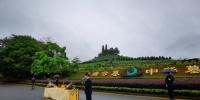 集中祭扫献万朵献花,他们为每一位逝者送去哀思 - 广东大洋网