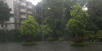 4日上午广州天河雷雨明显 - 新浪广东
