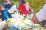 清明假期第二天各地接待现场祭扫群众3000余万人次 - News.Timedg.Com