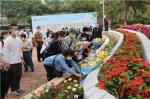 市银河革命公墓首次举行花坛葬集中安放仪式 - 广东大洋网