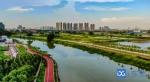 """东莞通报2020年度水污染防治工作考核结果,7个镇街获""""单打冠军"""" - News.Timedg.Com"""